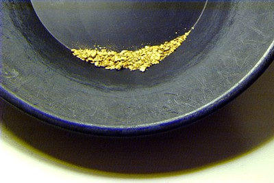 2011 gold pan