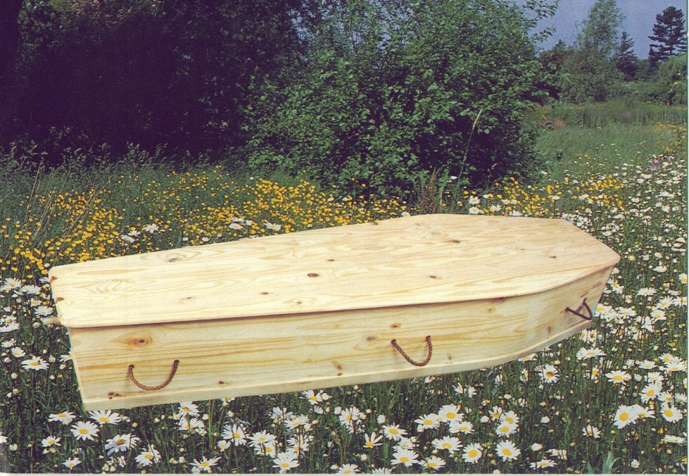 Green coffin made of pine