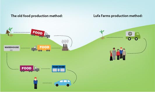Lufa Farms food process diagram