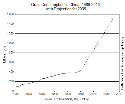 Chinese Grain Consumption