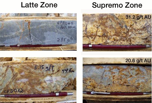 mineralized core samples