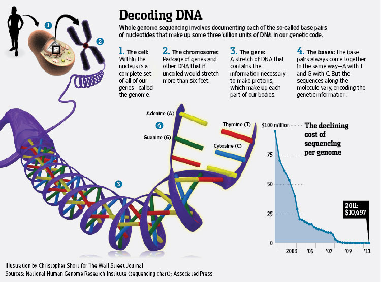 breakthrough map your dna for 1 000