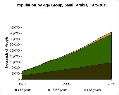 saudi population 10-22