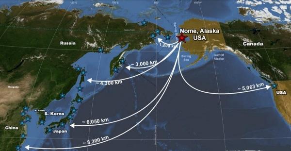 Alaska Shipping Routes
