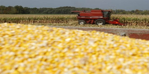 Ethanol Investing Dangers