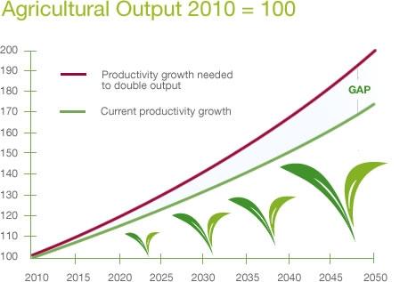 Gmos Increase Food Production