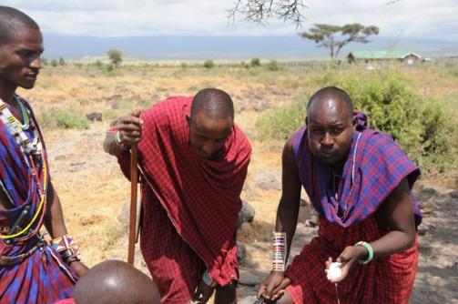 maasai kidneys