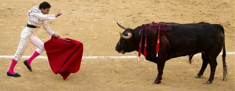 The Bull Market Is About to Get Slaughtered