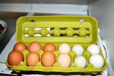 free range eggs 1