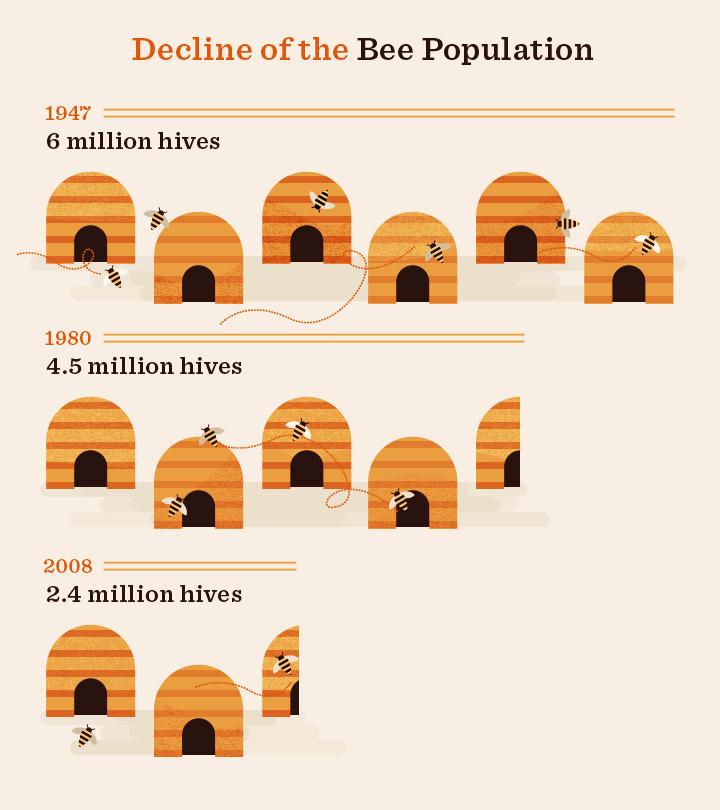 declinebeepopulation