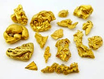 gold nuggets jan 6 2017