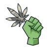 Marijuana Manifesto