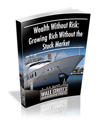 wealth-without-risk_report