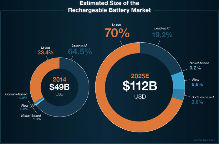 Visual Capitalist Lithium Battery Market Share Chart