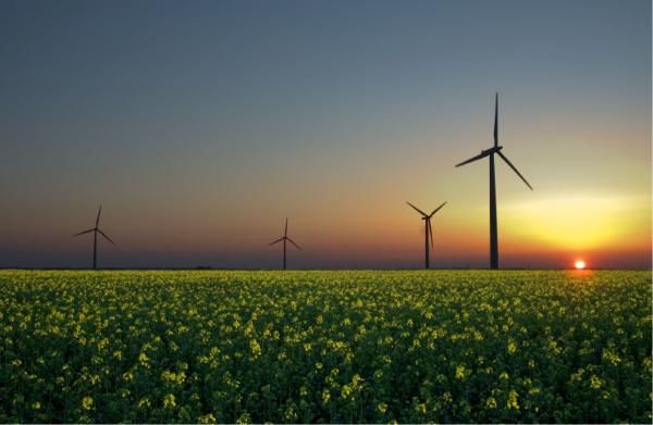 windmills 600x391