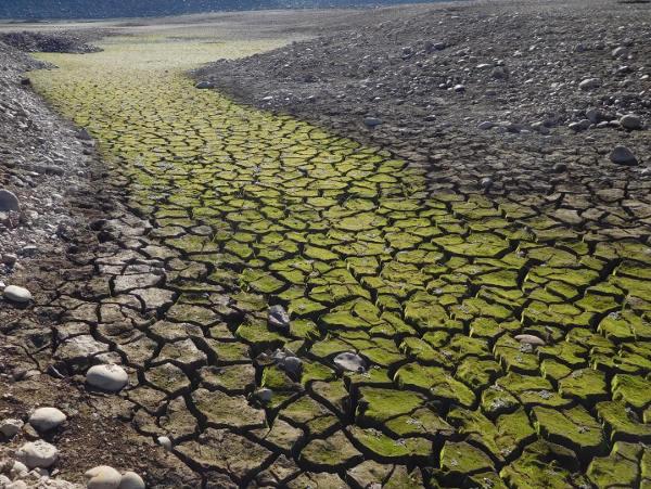 Lake Drought 600x451